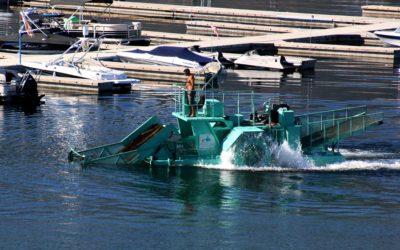 Mussels not endangered, OBWB hopeful to resume milfoil control