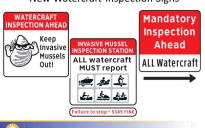 19 mussel-contaminated boats stopped from entering BC this year